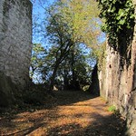 Zwischen den Mauern der Burgruine auf dem Drachenfels