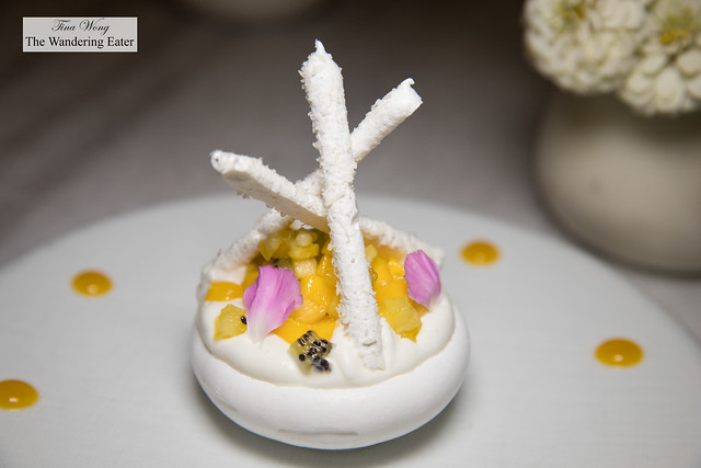 Tropical Pavlova 트로피칼 파블로바 - meringue, coconut mousse, fresh fruit, mango & passion fruit coulis, vanilla chantilly & coconut meringue stick