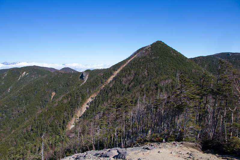 甲武信岳の山頂