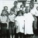 District 5 Root School