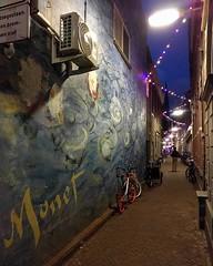 Monet mural in Delft #art #streetart #nightshot #shawnherron