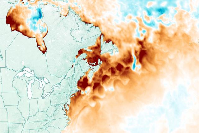Heatwave in the Gulf of Maine