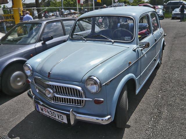 Steyr-FIAT 1100 (1109097)
