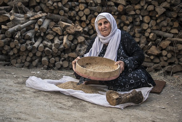 Kurdish culture III