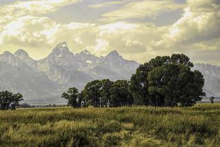 mormon row tetons_DSC0784-Edit | by alnbbates