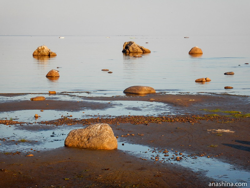 Финский залив Балтийского моря, Зеленогорск