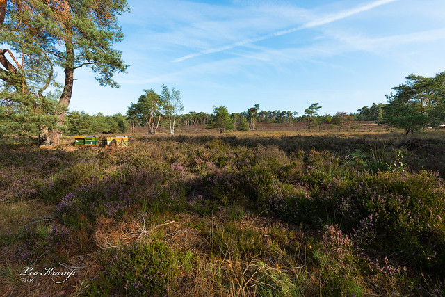 Beehives on the heather