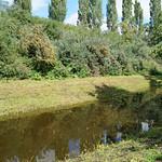 Gewässer am Fuß der Halde Rheinelbe