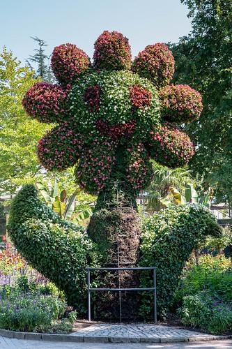 Floral decoration on the Island of Mainau | by ColinNash528