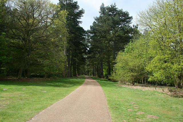 The Scenic Drive, Sandringham Country Park