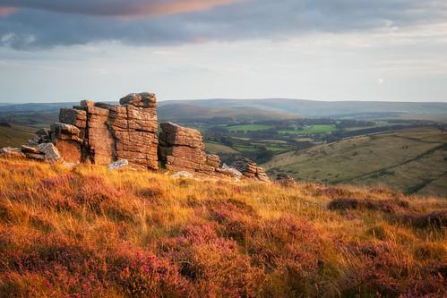 dartmoor sunset tor heather field moor moorland sky landscape landscapes landscapephotography view devon cloud clouds evening dusk colour grass outdoor hill sun canon england efs1585mmisusm eos80d