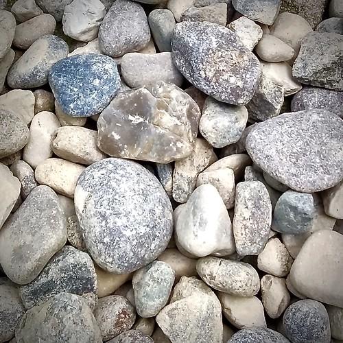definingbeauty macromondays pebbles macro hues tints color shapes