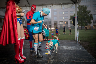 SUPER DOG: SUPERHEROES IN SCRUBS, PANKO & DR. PAM | by CASA of Travis County