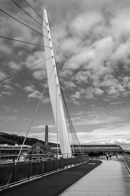 Swansea Marina Bridge B&W