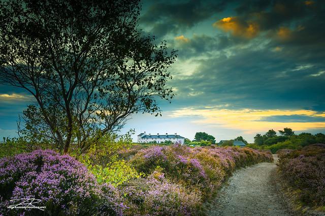 Dunwich Heath Sunrise