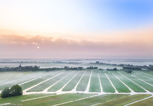 zoeterwoude zuidholland nederland nl sunrise fog