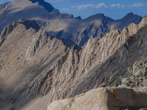 A raptor and the crags that divide Center from Forester basins   by snackronym