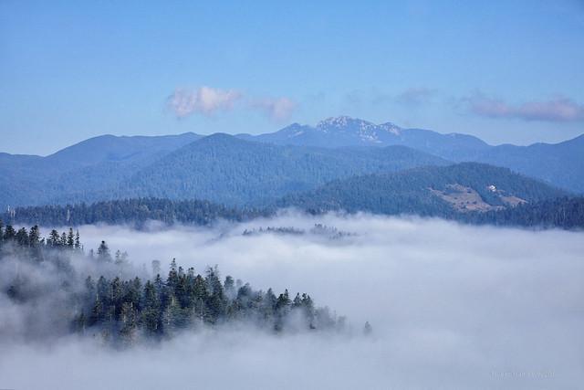 Jutarnje magle na Lokvarskom jezeru i oko njega (2)