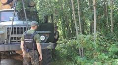 В Полоцком районе вскрыты криминальные факты реализации на экспорт необработанной древесины