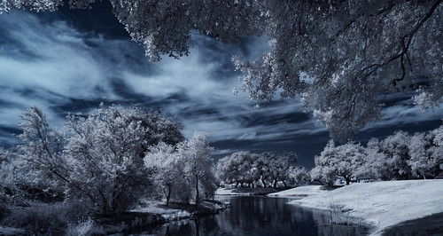 infrared infraredphotography convertedinfraredcamera ir santeelakes composition sky clouds vegetation channelswapping