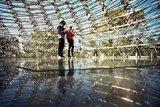 The Hive at Kew Gardens | by The Nick Page
