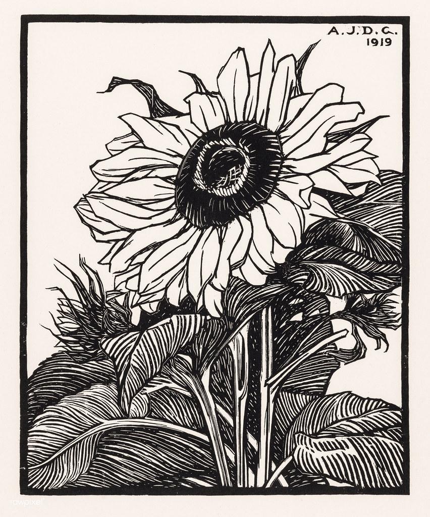 Flower 1918 Julie de Graag Fine Art Print