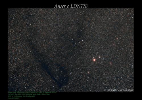 Anser e LDN778 | by AstroBetta