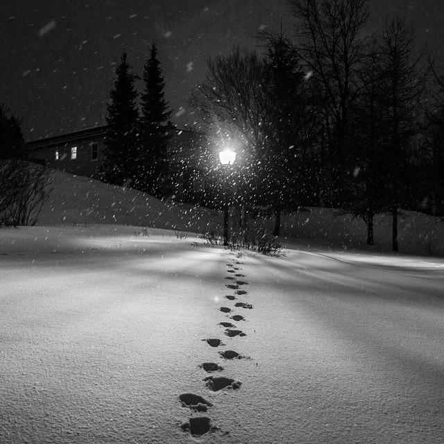 Step way