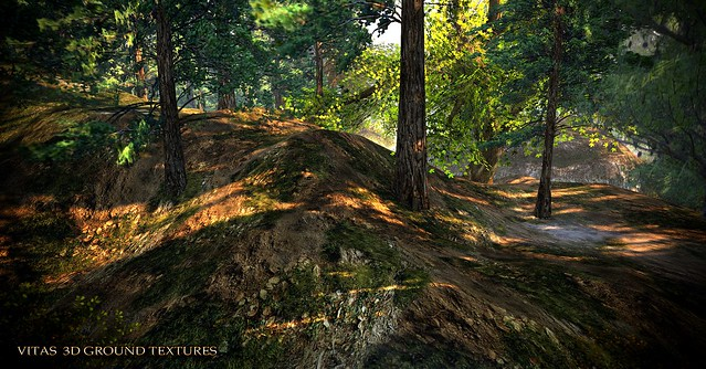 VITAS 3D GROUND TEXTURES Northern Forest NEW