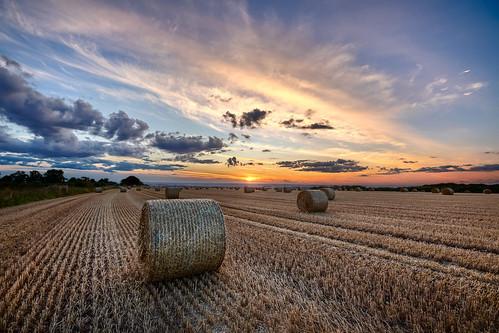 walkington england unitedkingdom gb highhunsley sunset bales field harvest eastyorkshire