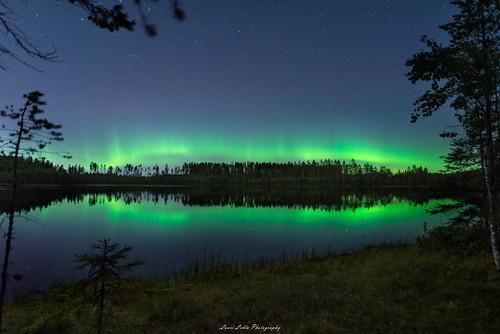 suomi finland kivilampi jyväskylä northernlights auroras auroraborealis nature landscape night nightscape forest trees sky stars nikon d750 sigma 20mm art wideangle lens longexposure amazing europe