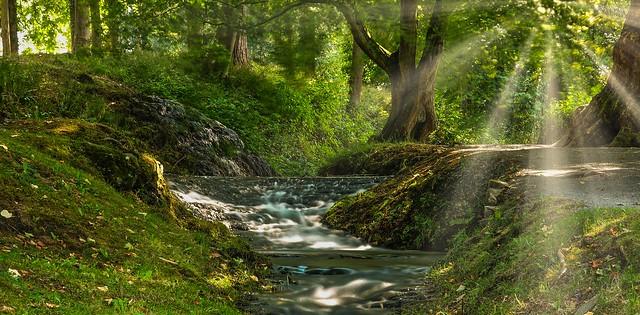 River - 5805