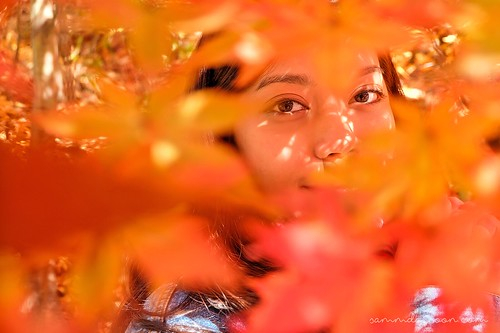 autumn_eyes_seoul_grand_park | by Sammdaysoon