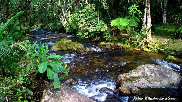 River - Rio