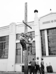 Workers on power pole, 1949