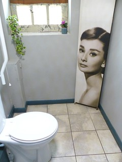 I was surprised to find Audrey in the corner of the loo.
