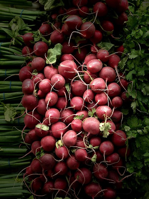 Enlightened radishes