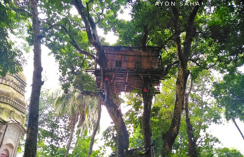beautiful natorerajbari ayonjr ayonsahaa bangladeshi bangladesh historic landscapephotography localguideayon ranibhawanirajbari landscape garden ayonsahaphotography ayonsaha natoredistrict natore rajbari tour