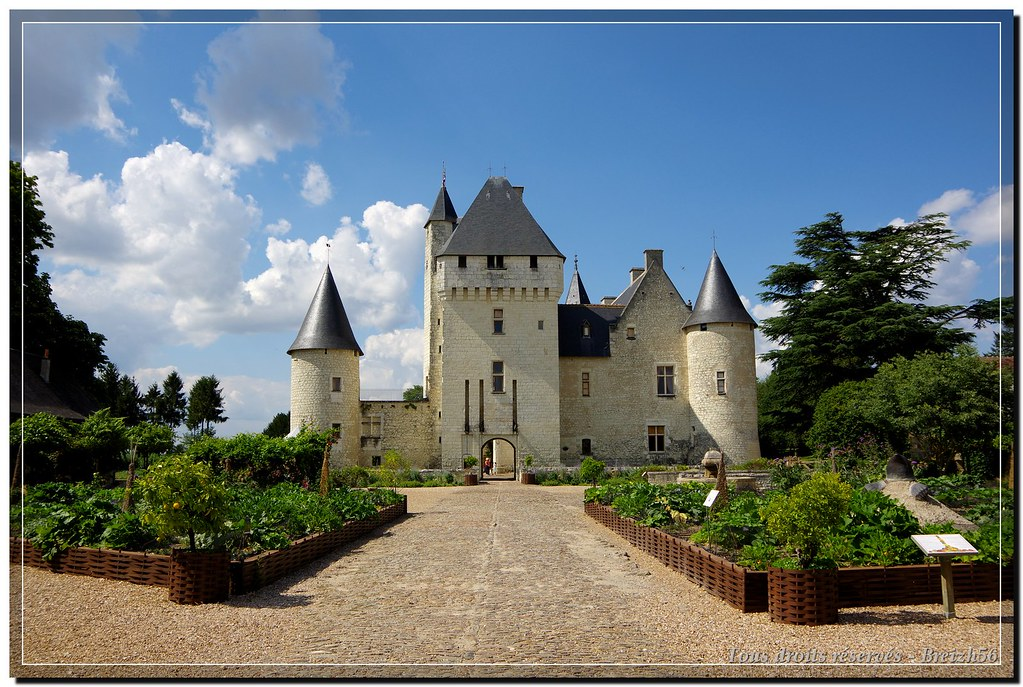 Château du Rivau (48)
