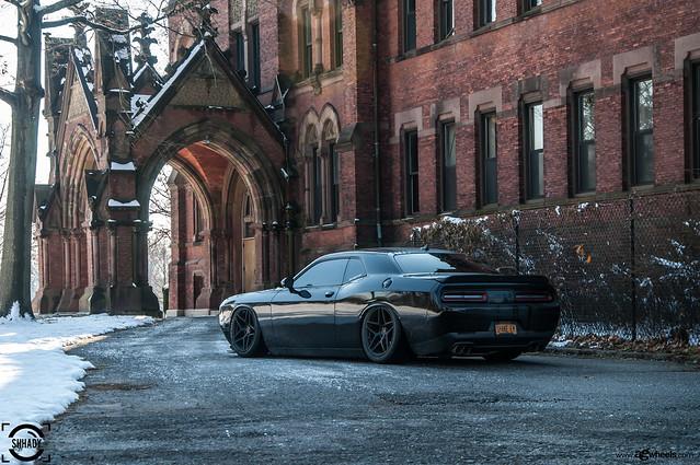 Dodge Challenger R/T 392 Hemi Scat Pack - M650 Matte Black