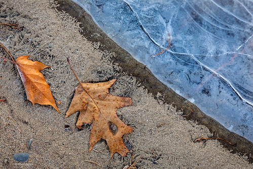 Detail of Woodbine Beach on a frozen wintry morning - Toronto | by Phil Marion (173 million views - THANKS)