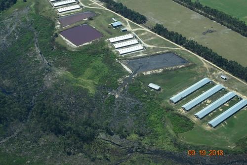 Tomahawk Creek Breach wide | by Waterkeeper Alliance Inc.