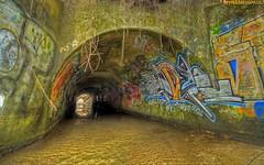 Tunnel of Love | by plainpaul