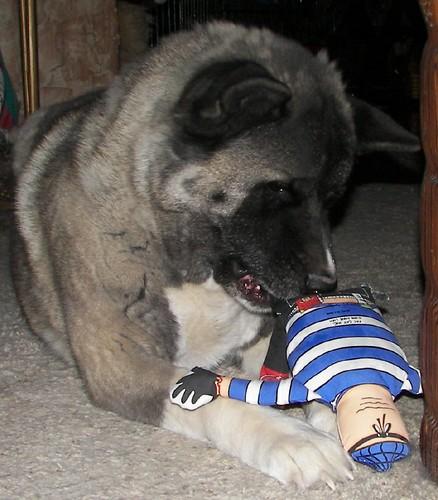 Quey and the Cat Burglar 3