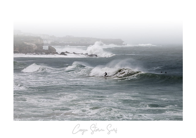 coogee storm surf