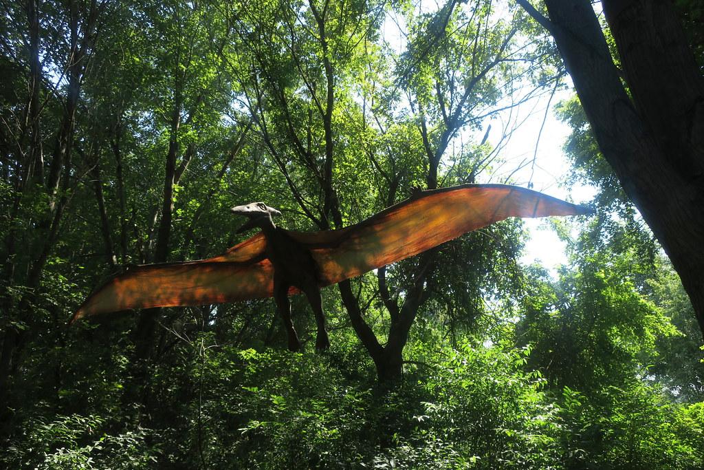 NJ - Leonia: Field Station: Dinosaur - Pteranodon | Pteranod