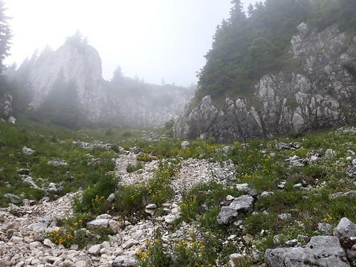 Drumetie in Piatra Craiului - Zarnesti-Creasta Nordica (17)   by mergpemunte.ro
