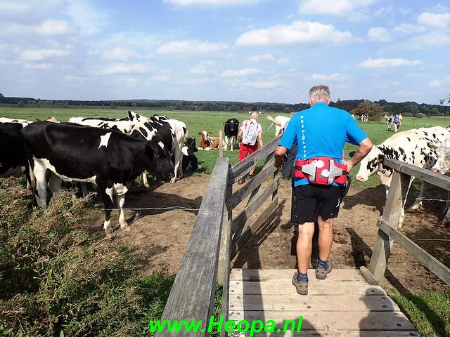 2018-09-19                  Amerongen     23 Km (196)