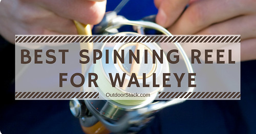 Best Spinning Reel for Walleye | by Victor Mays