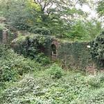 Üppiges Grün überwuchert die Ruine der Isenburg in Essen